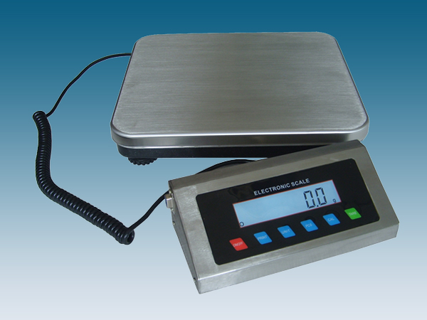 Stainless steel body scales